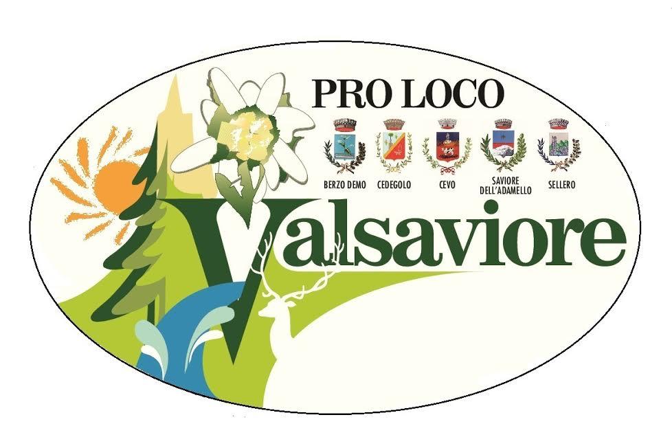 logo vecchio valsaviore