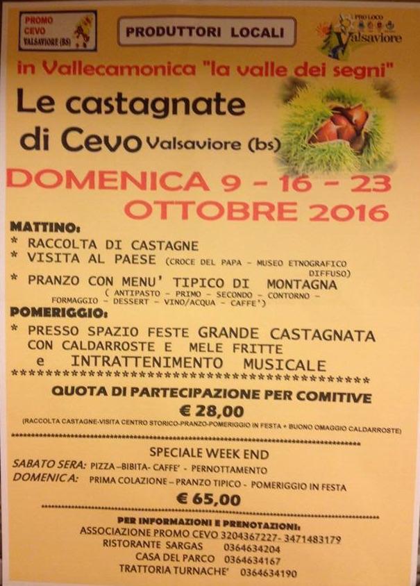locandina-castagnate