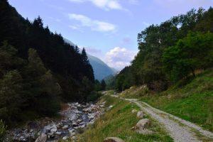 """Uno sguardo lungo il percorso della Via della """"Bionda"""""""